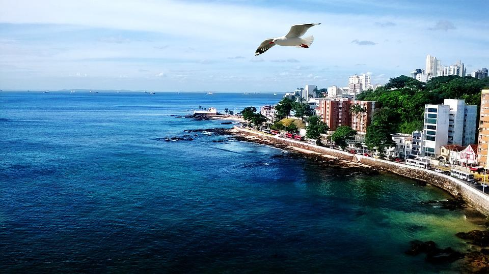 Mar, Ocean, Seagull, Litoral, Landscape, Beira Mar