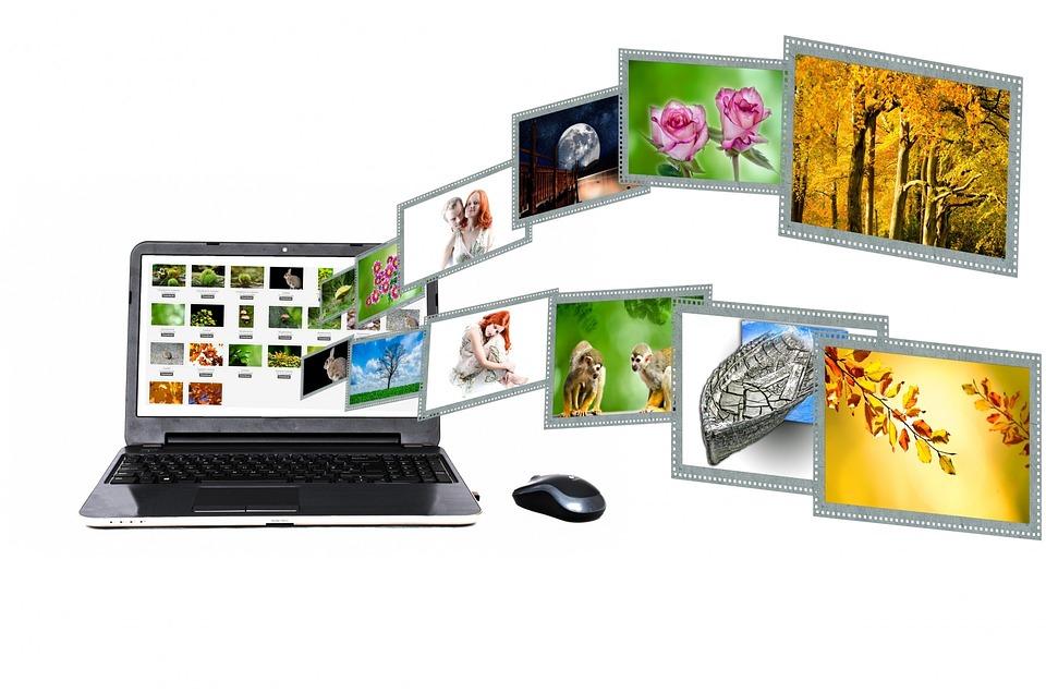 Internet, Content, Portal, Search, Laptop, Concept