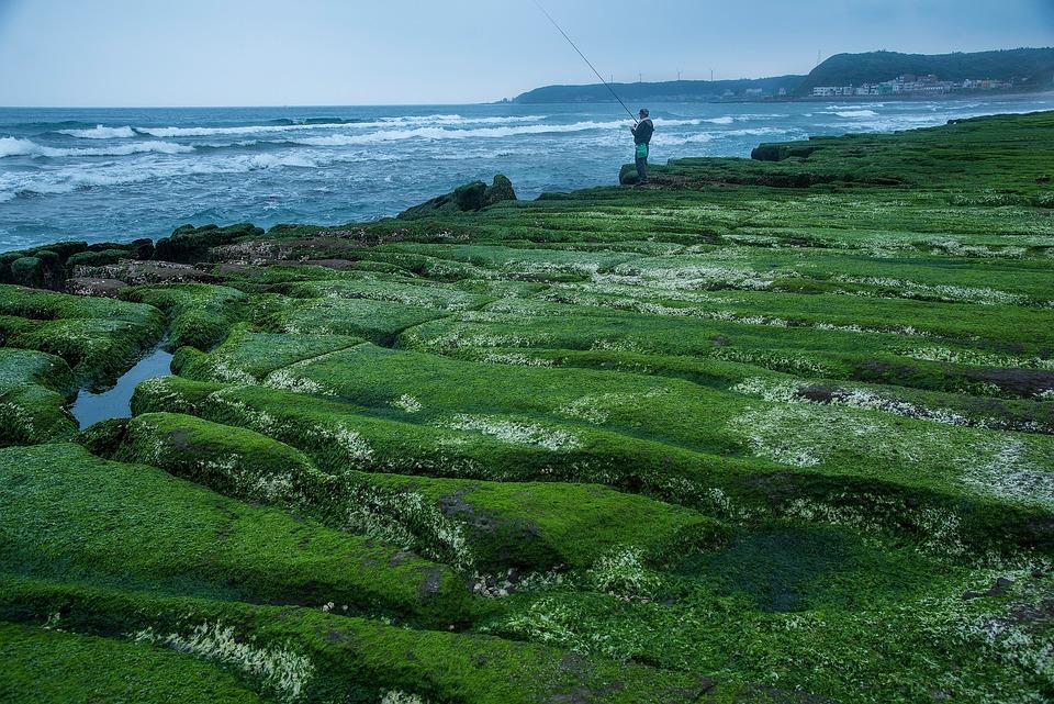 Water, Nature, Sea, Landscape, Seashore, Rock