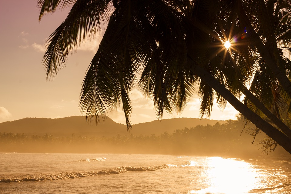 Beach, Mountains, Nature, Ocean, Palms, Sea, Seashore