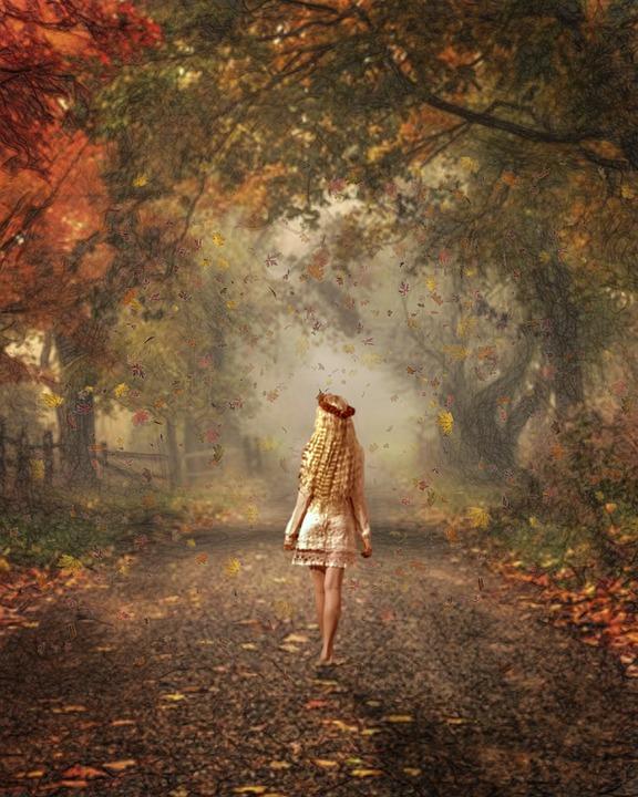 Fall, Autumn, Season, Nature, October, Trees, Colors