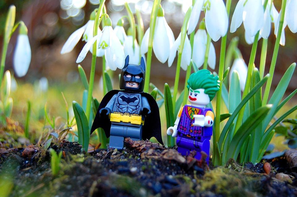 Flower, Nature, Outdoors, Flora, Season, Spring, Fun