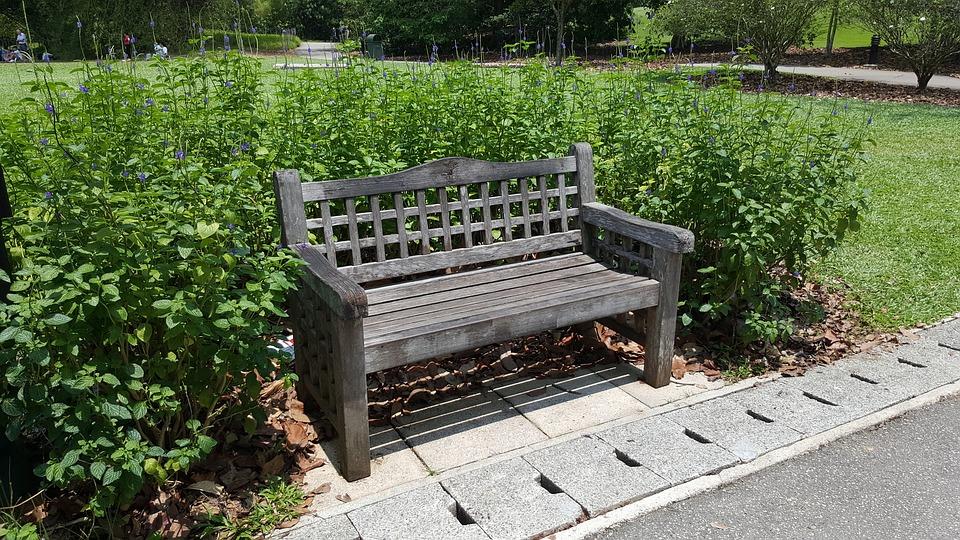Bench, Garden, Nature, Summer, Seat, Grass, Outdoors