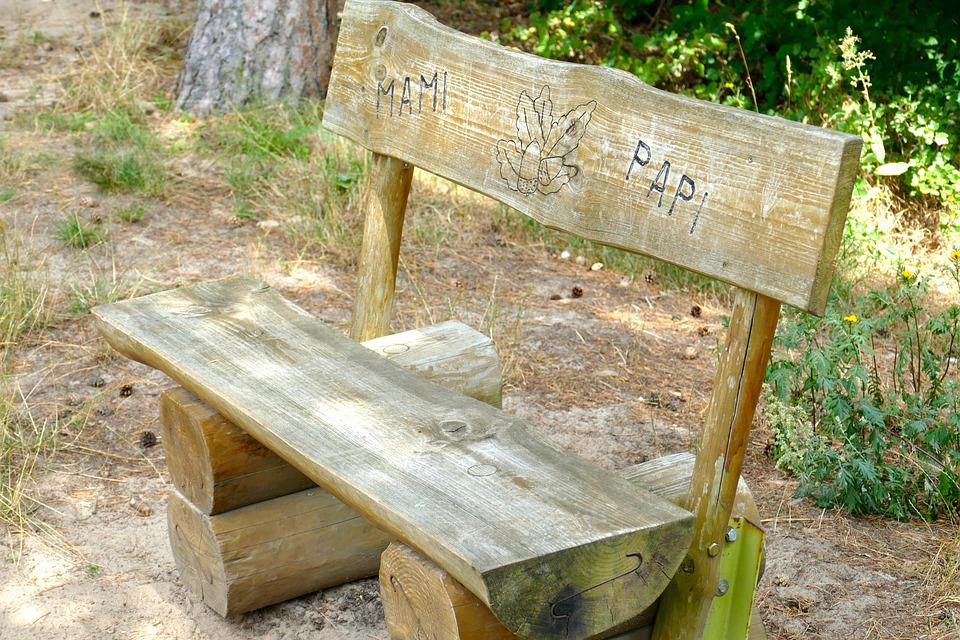 Bank, Wood, Forest, Nature, Rest, Unique, Seat, Sit