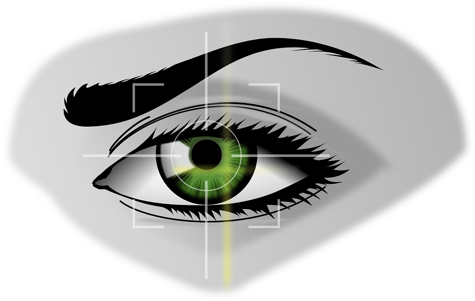 Biometrics, Eye, Security, Iris Scanner, Iris, Eyebrows