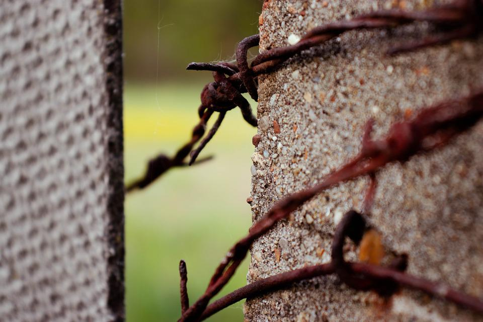 Fence, Wire, Barbed Wire, Metal, Security, Demarcation