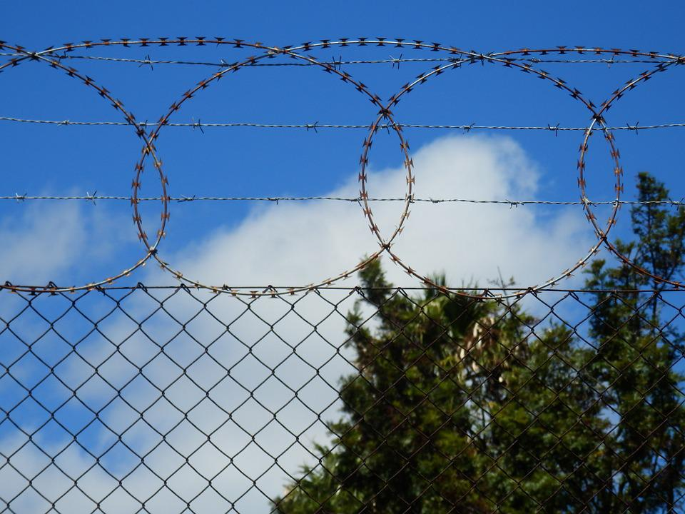 Barbed Wire, Security, Protection