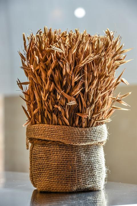 Wheat, Grain, Agriculture, Harvest, Food, Seed, Bread