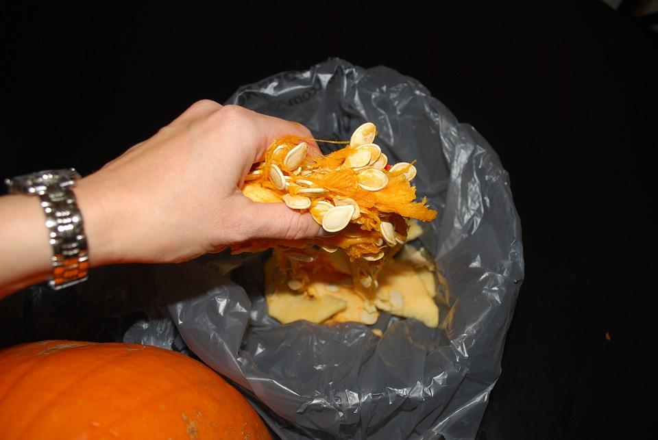 Pumpkin, Seeds, Rubbish