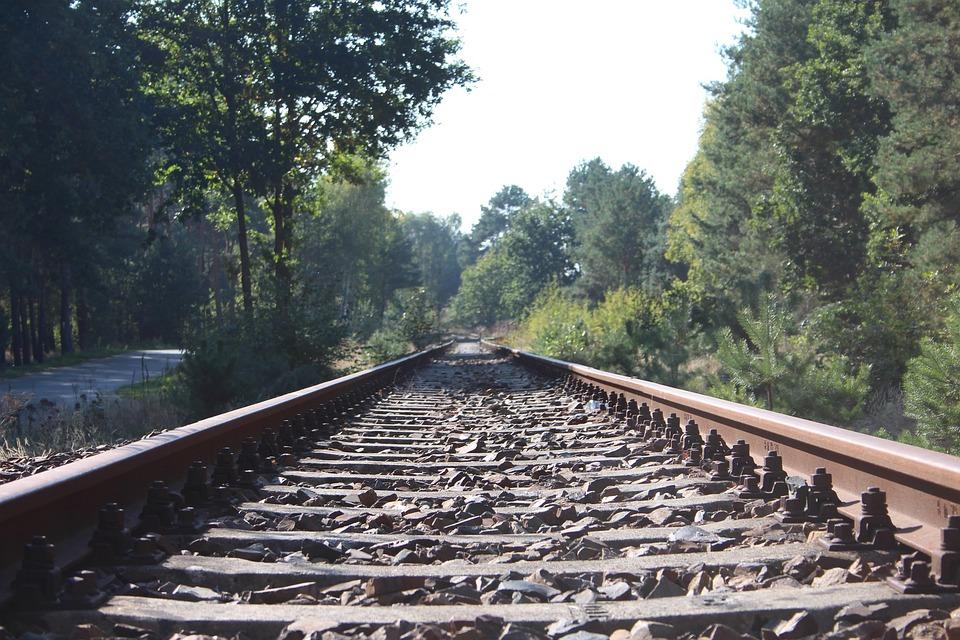 Railway Rails, Nature, Seemed, Track Bed, Track