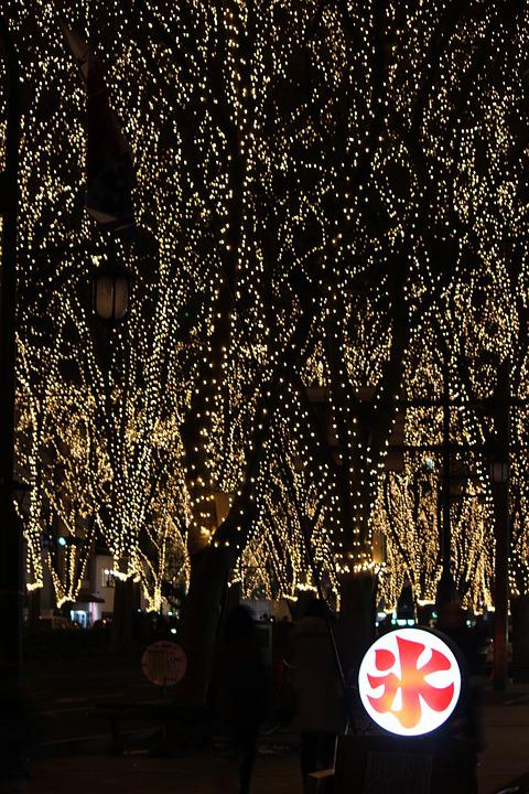 Pageant Of Light, Illumination, Sendai, Shaved Ice