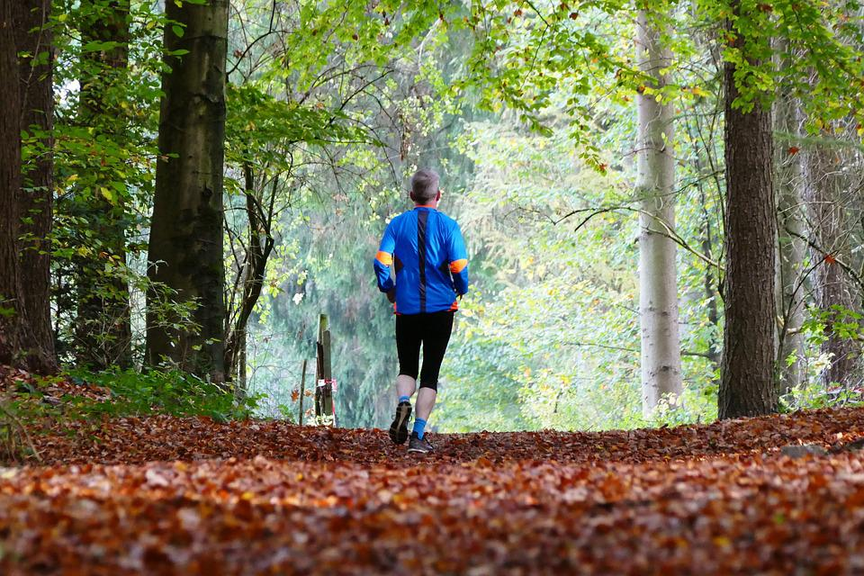 Forest, Nature, Sport, Jogger, Trees, Leaves, Senior