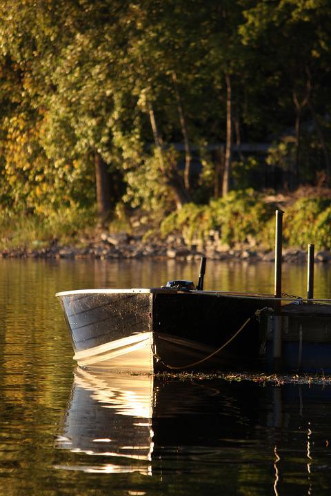 Boat, Serene, Water, Angling, Tree, Relax