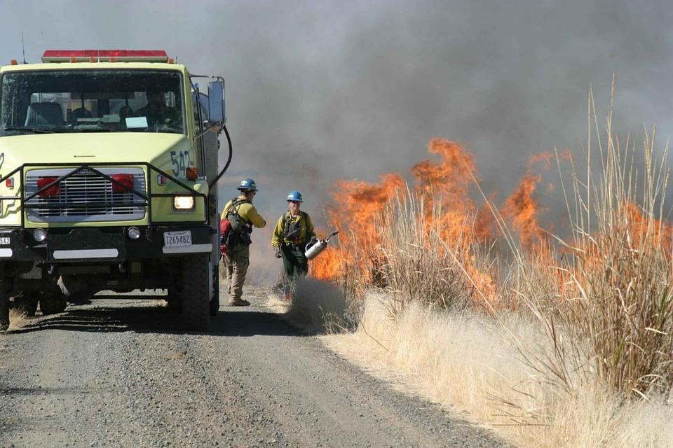Setting, Firemans, Burning, Marsh, Flames, Fire