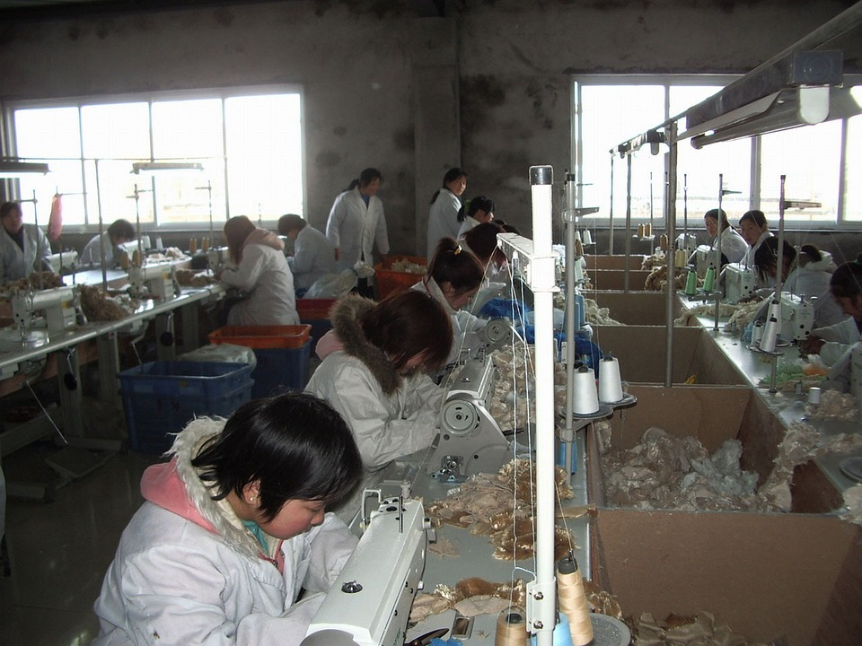 Worker, Factory, Sewing, Machine, People
