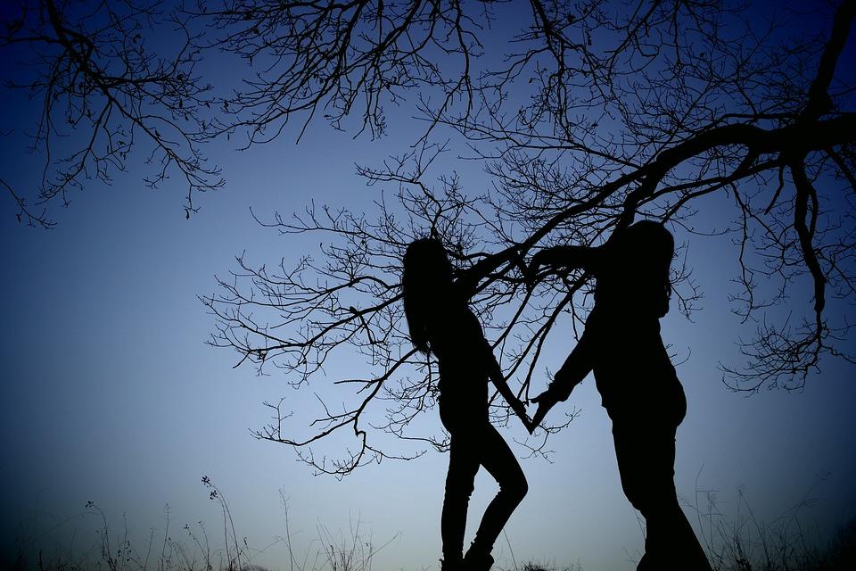Photo, Shading, Trees, Friends, Love, Friendship, Heart