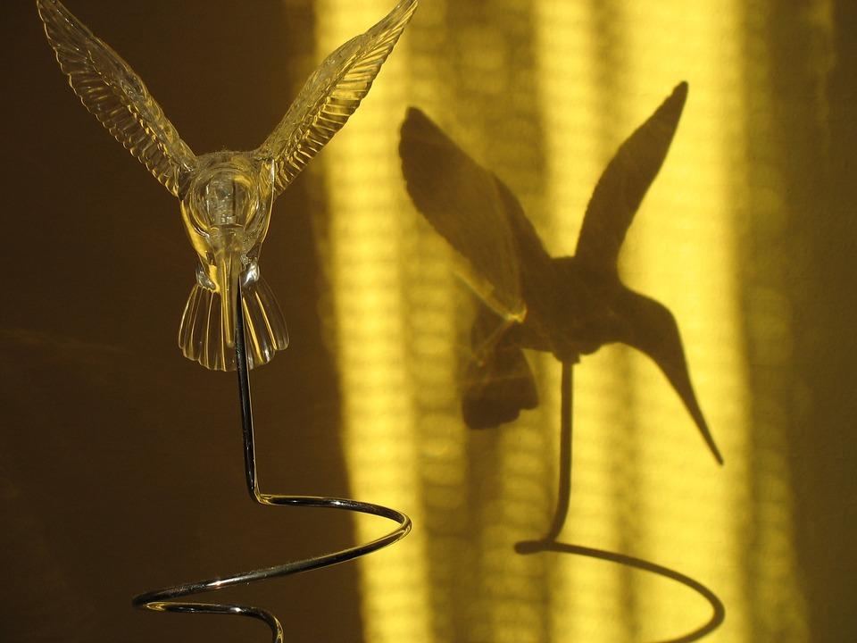 Bird, Artificial, Shadow, Hummingbird
