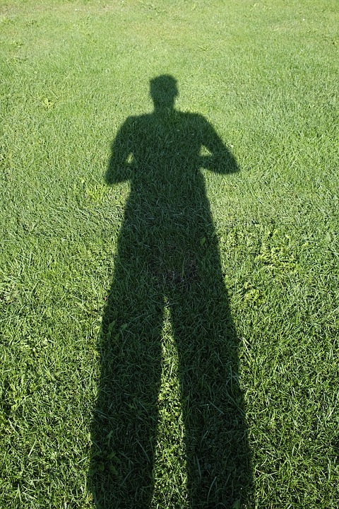 Rush, Grass, Meadow, Green, Shadow, Human, Person