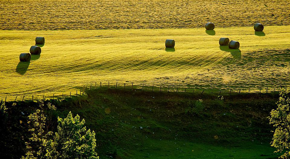 Landscape, Dusk, Shadow, Nature, Evening, Mood, Sun