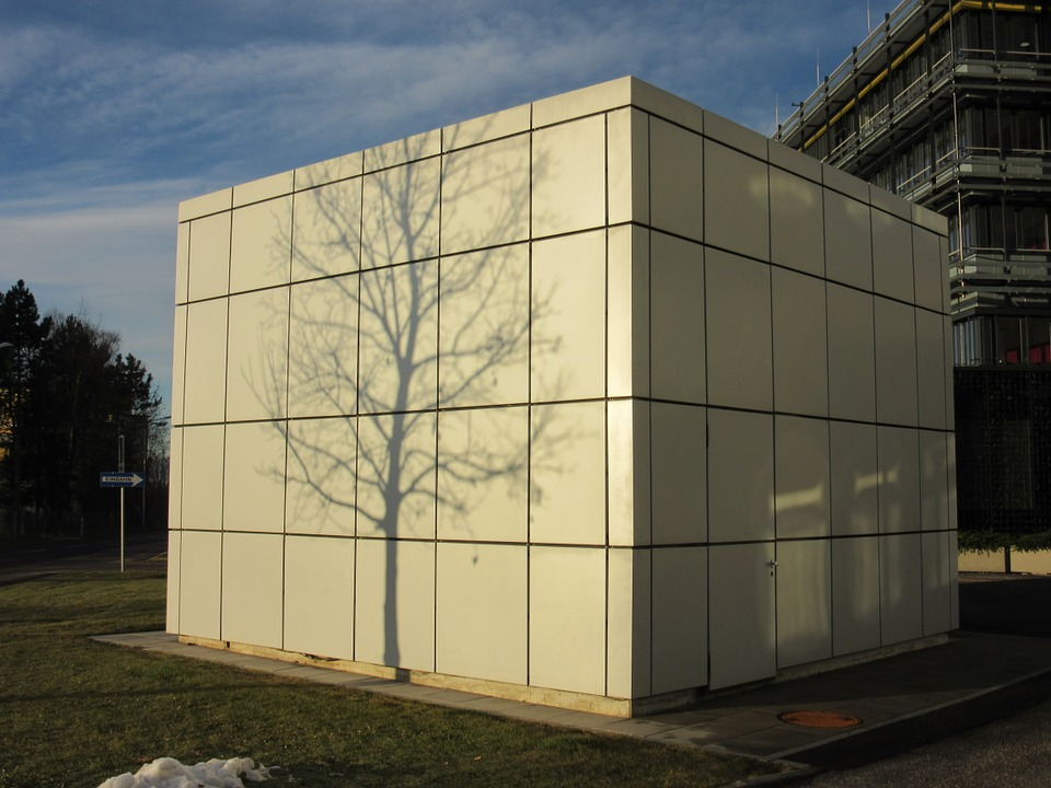 Shadow, Tree, Building, Hispanic