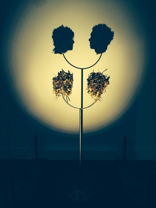 Museum, Adelaide, Art, Artistic, Shadows, Light, Beauty