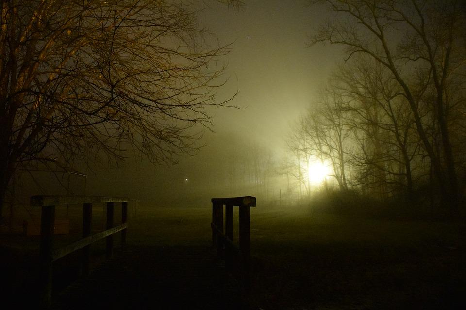 Fog, Night, Shadows, Evening, Darkness, Park, Trees