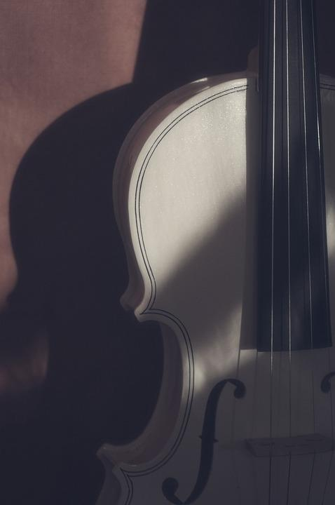 Violin, Instrument, Shadows, White Violin