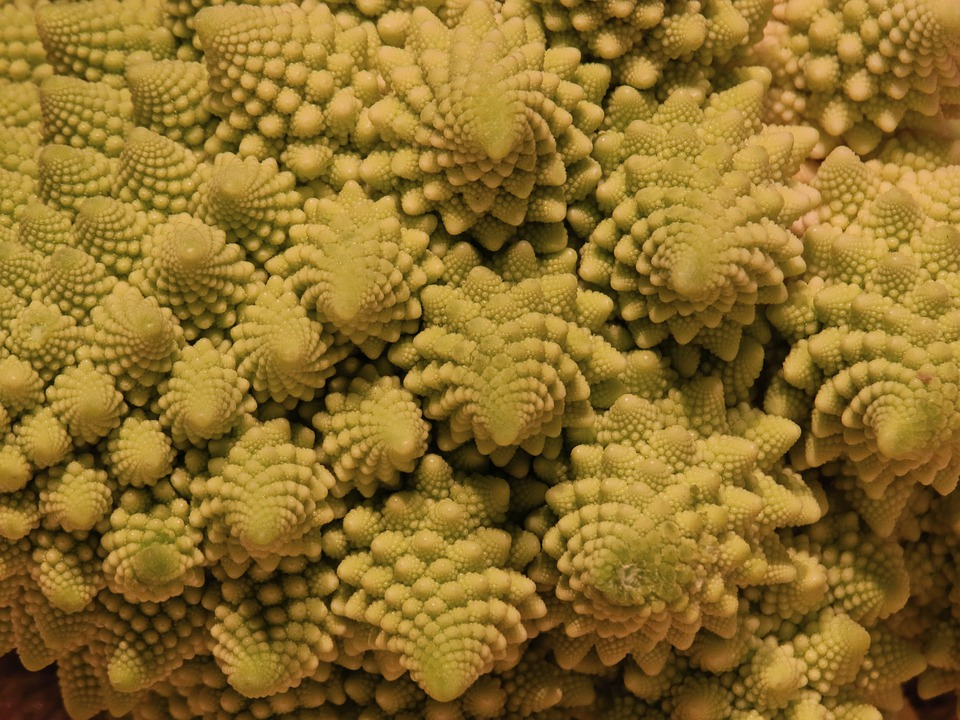 Romanesco, Cabbage, Cauliflower, Light Green, Shape