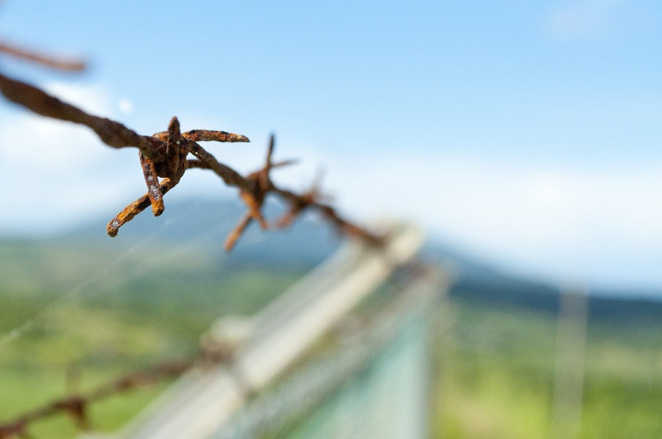 Barbed Wire, Fence, Mountains, Security, Barrier, Sharp