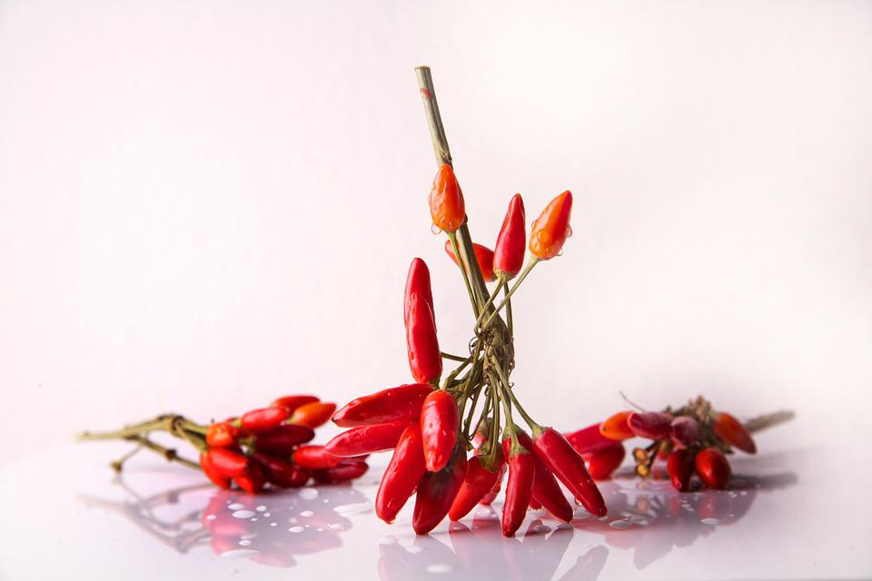 Chili, Spice, Chili Peppers, Red, Sharp, Food