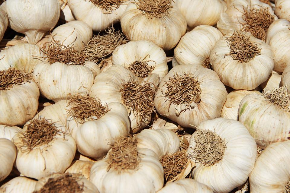 Garlic, Market, Food, Healthy, Eat, Spice, Sharp