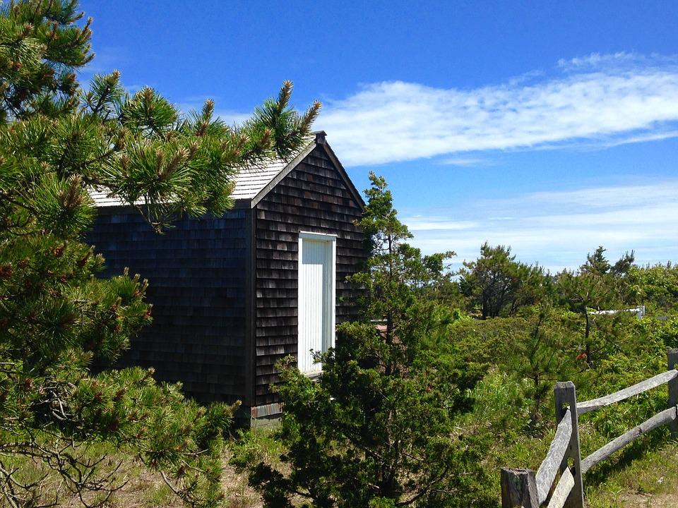 Shed, Landscape, Outdoors