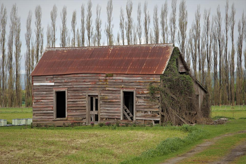 Shed, Old, Wooden, Rusty, Roof, Run, Down, Wairarapa