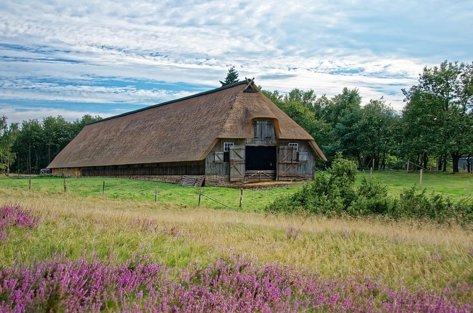 Germany, Lüneburg Heath, Sheep Barn, Heathland
