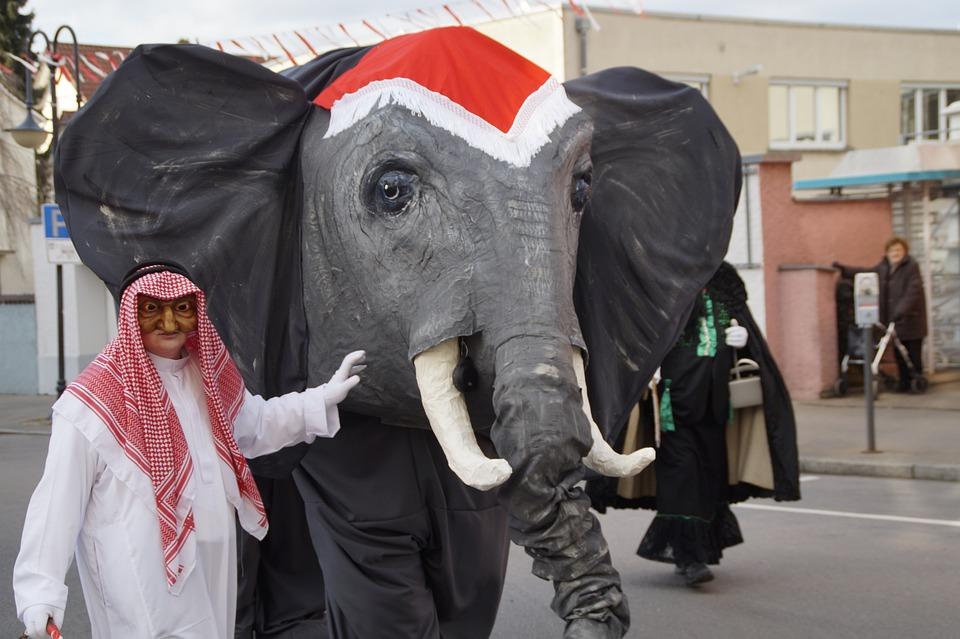 Elephant, Sheikh, Tamer, Animal Trainer, Fig, Fool