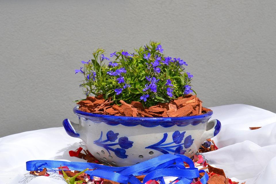 Earthenware, Ceramic, Vessel, Grey, Blue, Shell