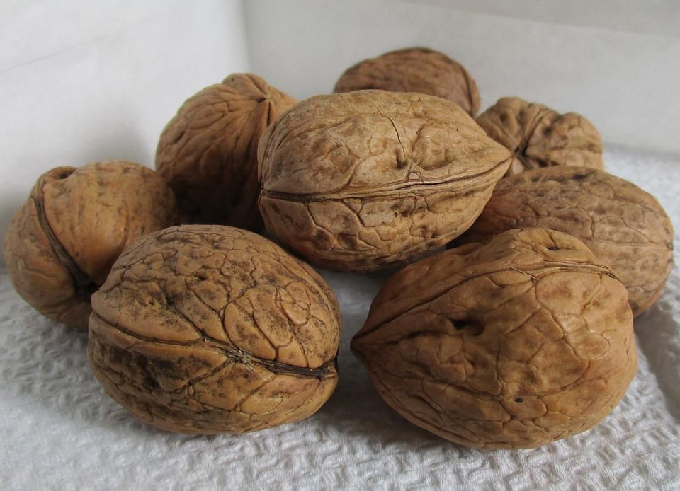 Walnuts, Shell, Organic, Agriculture, Dried Fruit