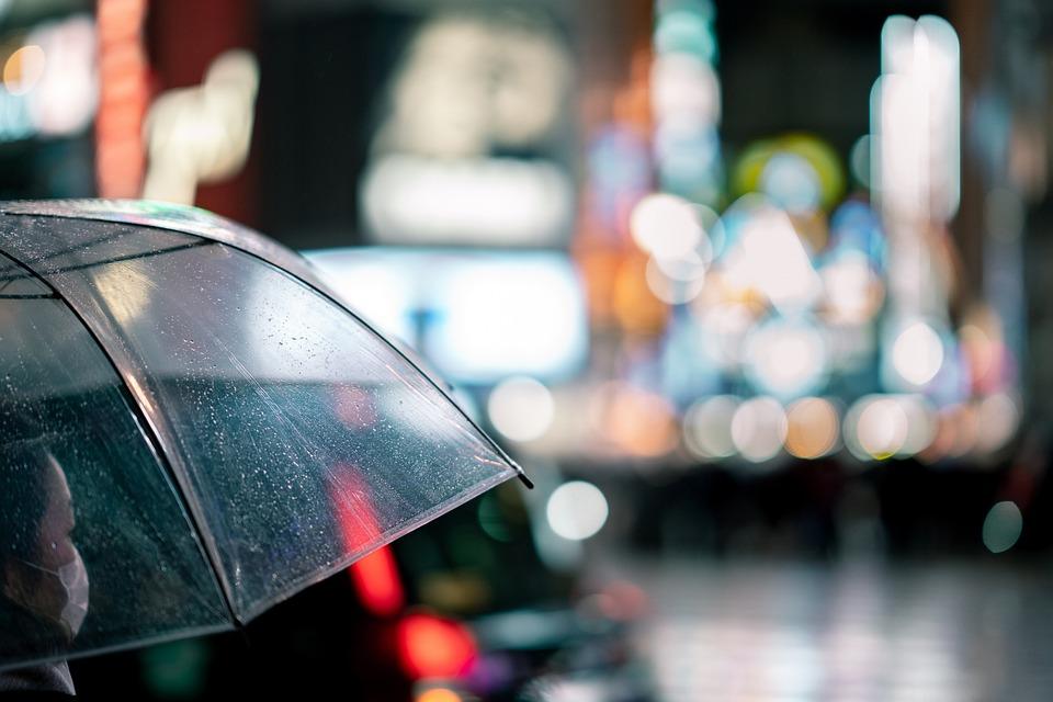 Umbrella, Street, Night, Tokyo, Shibuya, Crossing