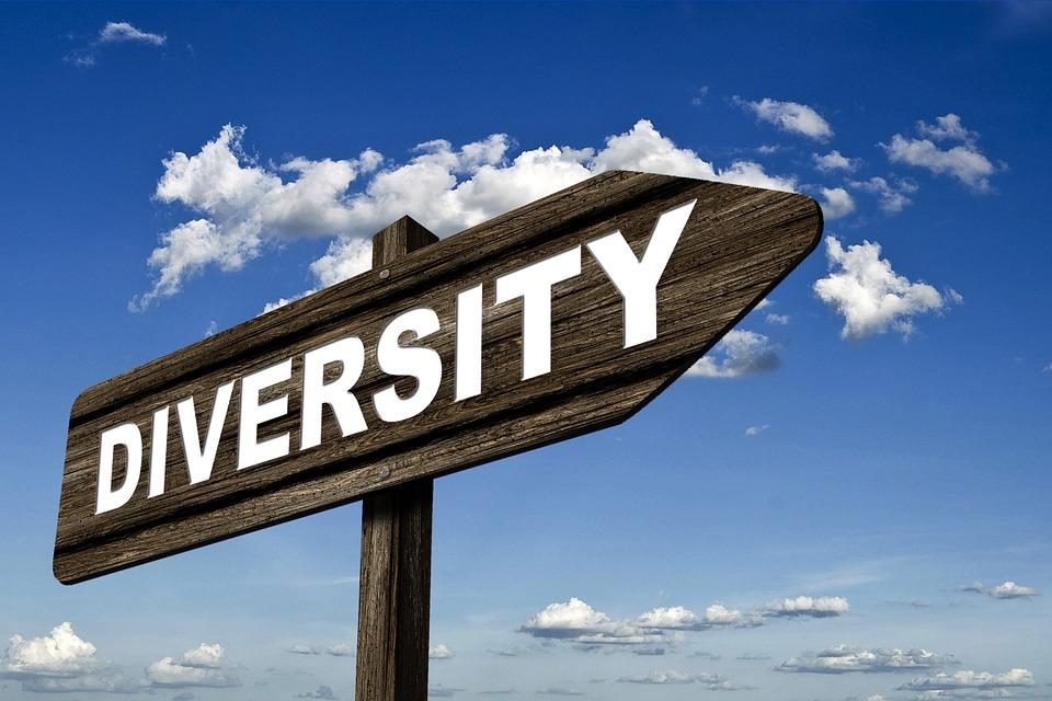 Directory, Diversity, Signposts, Shield, Range, Wealth