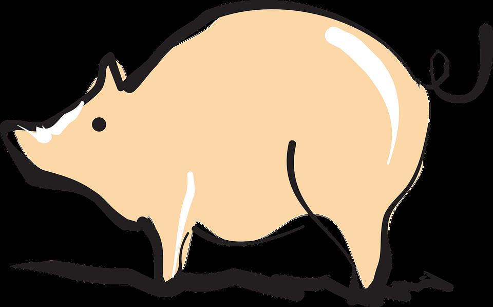 Pig, Barn, Farm, Shiny, Animal