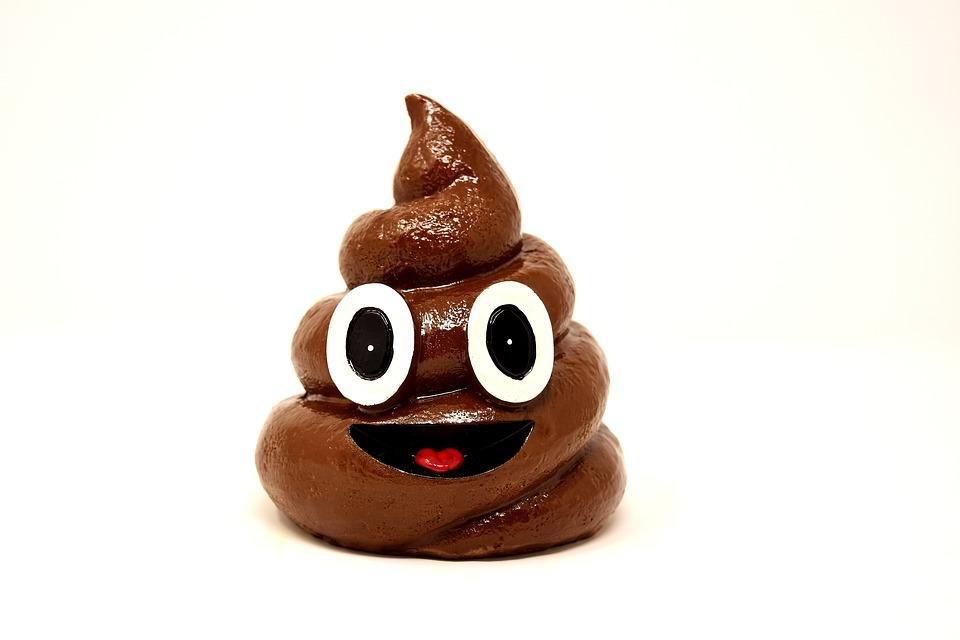 Kot, Pile, Poop, Funny, Ceramic, Shit