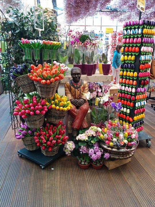 Tulips, Shop, Man, Flowers