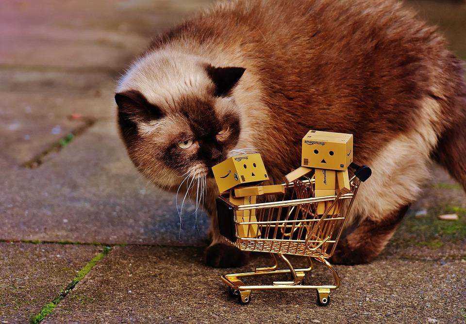 Danbo, Figures, Shopping Cart, Shopping, Cat, Curious