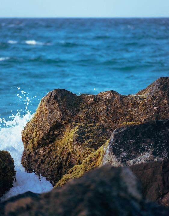 Rocks, Waves, Ocean, Beach, Coast, Shore, Water, Nature