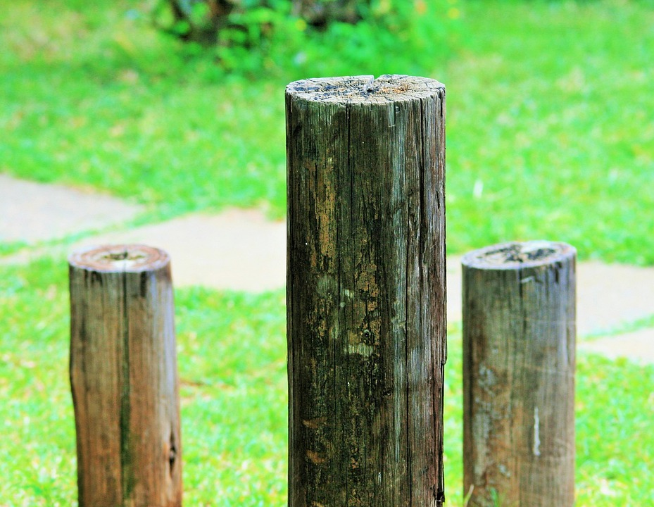 Posts, Poles, Short, Wooden, Dry, Weathered, Outdoors