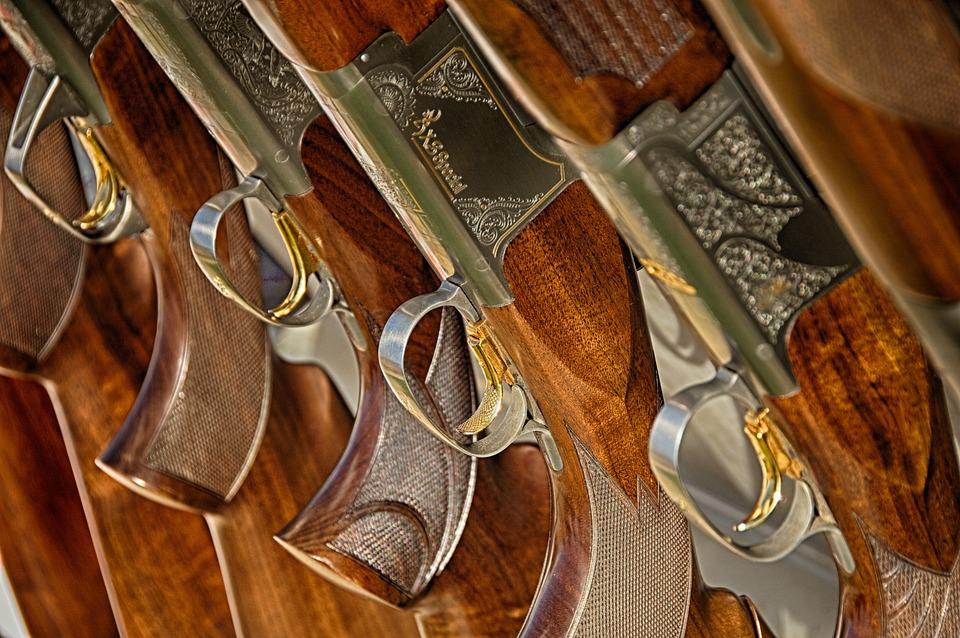 Guns, Rifle, Weapon, Target, Hunting, Firearm, Shotgun