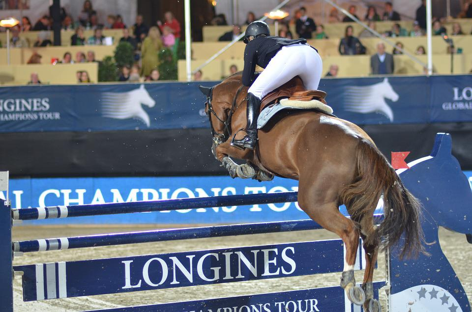 Show Jumping, Horse, Equestrian, Jump, Obstacle