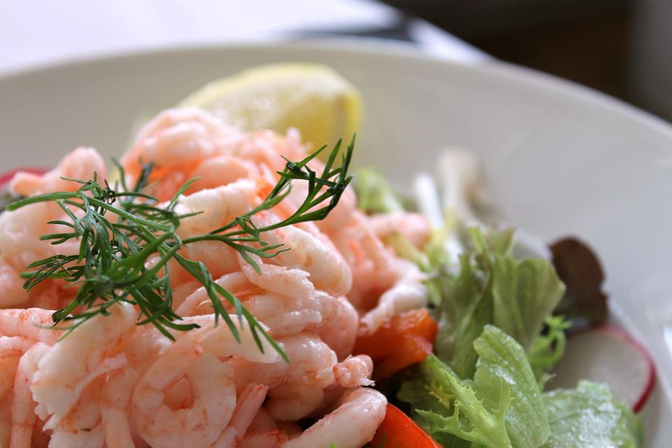 Shrimp Salad, Today's Lunch, Shrimp