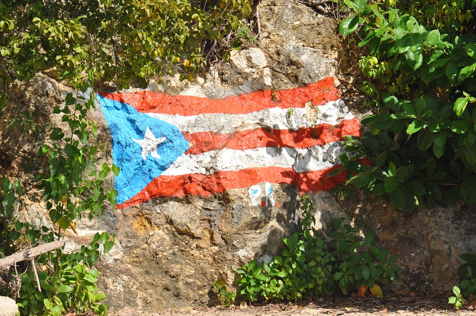 Puerto Rico, Mountain, Rock Wall, Flag, Shrubs