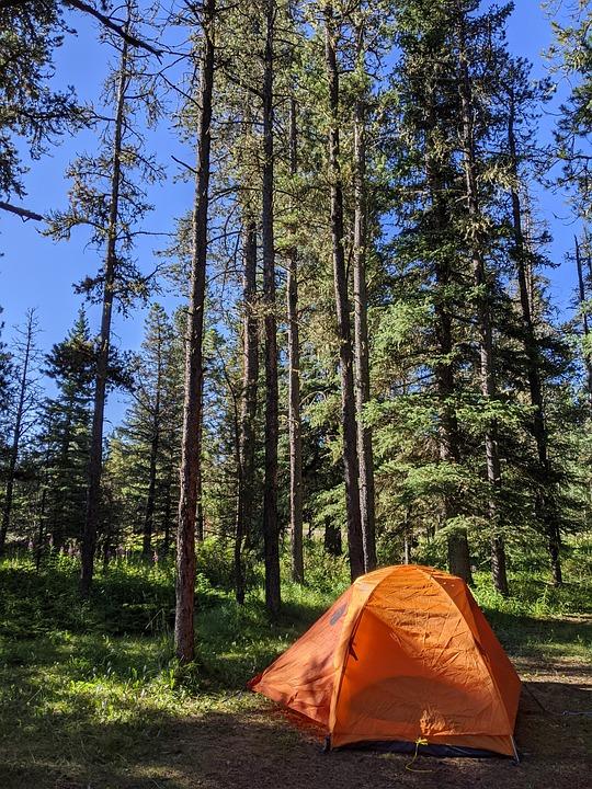 Sibbald Lake Provincial Recreation, Tent, Camping
